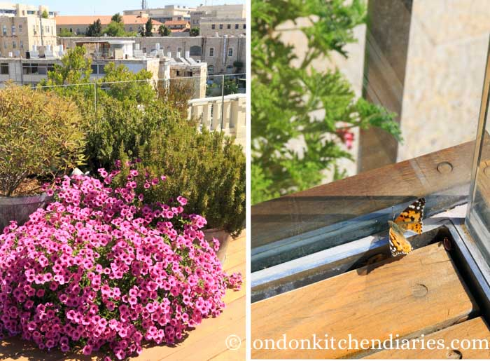 Herbs and flowers on rooftop sun terrace Mamilla Hotel