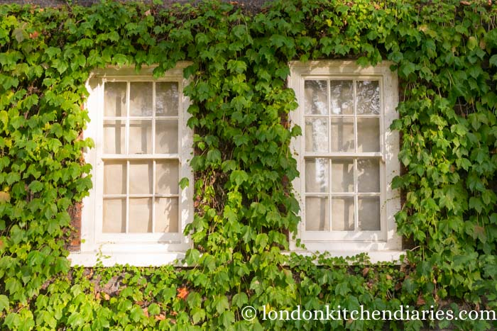 Windows surrounded by green at Geffrye Museum London