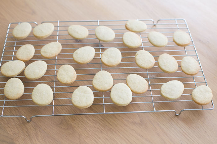 Easter Butter Biscuits-8328