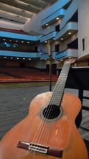 Pyongyang Guitar (photo: Jason Carter)