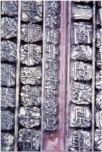 Detail of the movable type for the Jikji