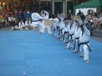 Taekwondo demo - the big kick 3