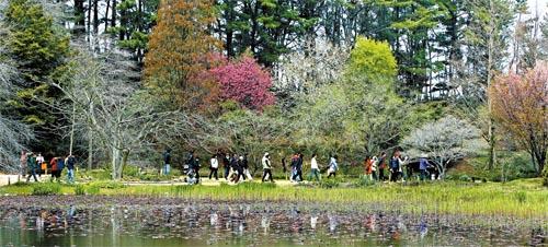 The Chollipo Arboretum in Taean, South Chungcheong