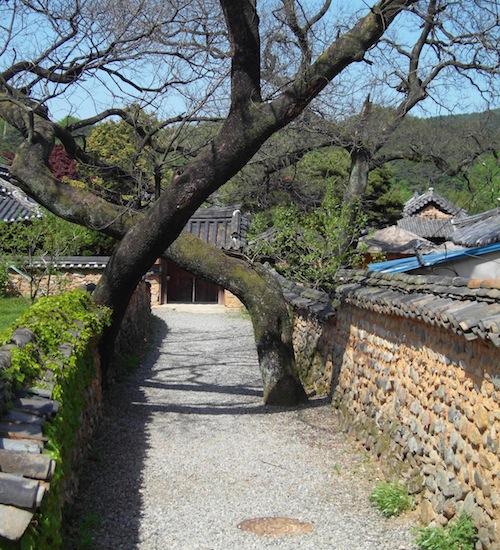 A favourite view of Namsa-ri