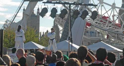 You could just see the Taekwondo demonstration over the heads of the crowds