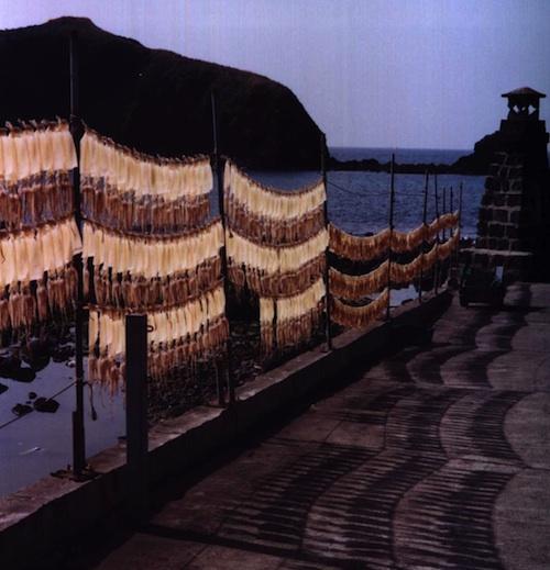 Squid drying, Jejudo
