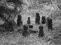 Jeju Dongsaseok artfully arranged off a woodland trail