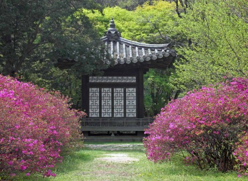 A small pavilion in the gardens near the Nakseonjae