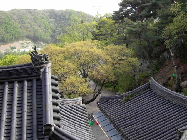 The view over the trees from Jeonchuiam