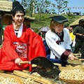 Thumbnail for post: Sancheong 2012 herbal medicine festival in the news