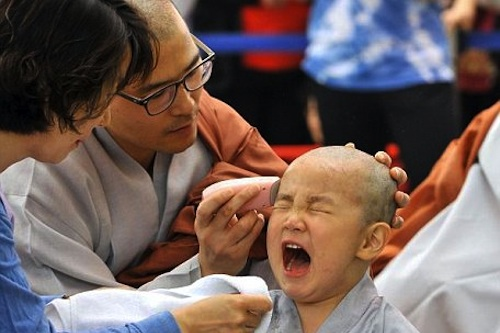"A South Korean boy gets his head shaved by a Buddhist monk during a ""Children Becoming Buddhist monks"" - ceremony at Jogye temple in Seoul"