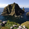 Thumbnail for post: Dokdo, Historical Awareness, and Korea-Japan Relations
