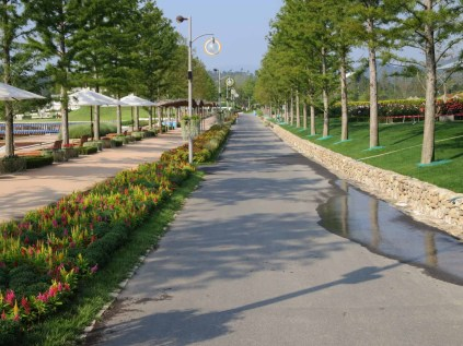 The main East-West thoroughfare in the Suncheon expo, bordered with celosia