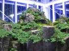 Cheonwangbong, Jirisan's highest peak, is modelled in one corner of the greenhouse