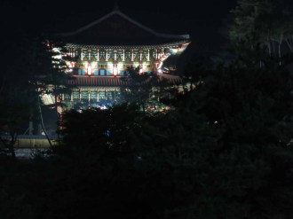 The Gi Experience Village at night
