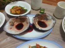 Blood Clams (after)