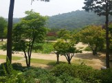 A view over the Main Garden from the teashop terrace