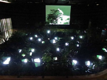Paik Nam June: TV Garden, at the Paik Nam June Art Center, June 2014