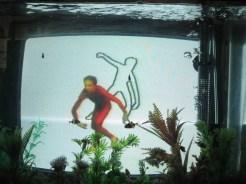 Dancer and Choreographer Merce Cunningham - on TV, in a fish tank - at the Paik Nam June Art Center, June 2014