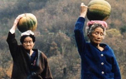 Harvesting the pumpkins in Habitual Sadness