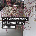Thumbnail for post: Event news: Sewol families visit UK