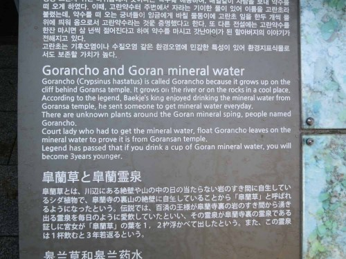The story of Goransa and its spring