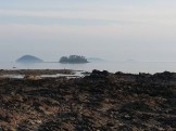 The scenic views from a beach near Lands' End