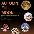 Thumbnail image for Event news: Chuseok celebrations in Kingston