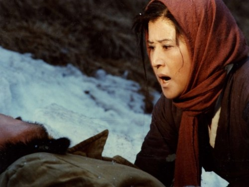 Salt: one of the movies Shin and Choi made in the North