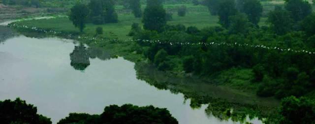 Sojung Jun: Green Screen (2021)