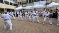 The Livingwell Taekwondo demonstration team