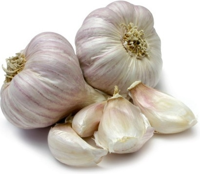 Garlic lover? It's time to plant!