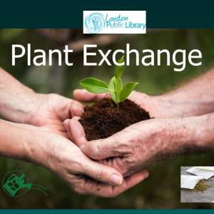 Spring Plant Exchange @ London libraries – May 11, 18, 25