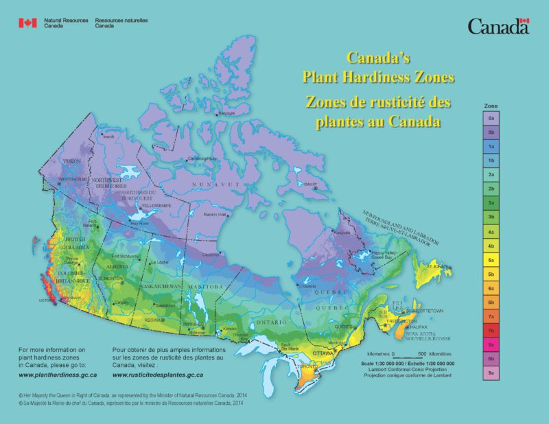 Hardy Zone Map Canada Hardiness zones important to making the right plant choices