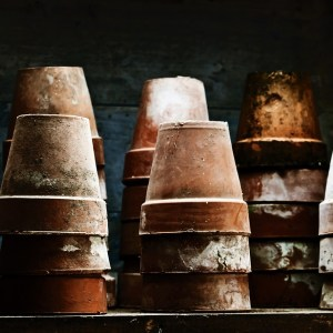 How To Make Your Dirty Old Terra Cotta Pots Look Brand Spankin' New