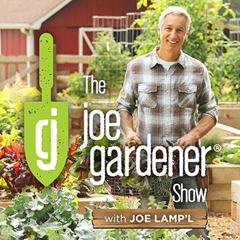 "Podcast series ""Garden Myths Busted"". Joe Gardener gets the facts from Linda Chalker-Scott"