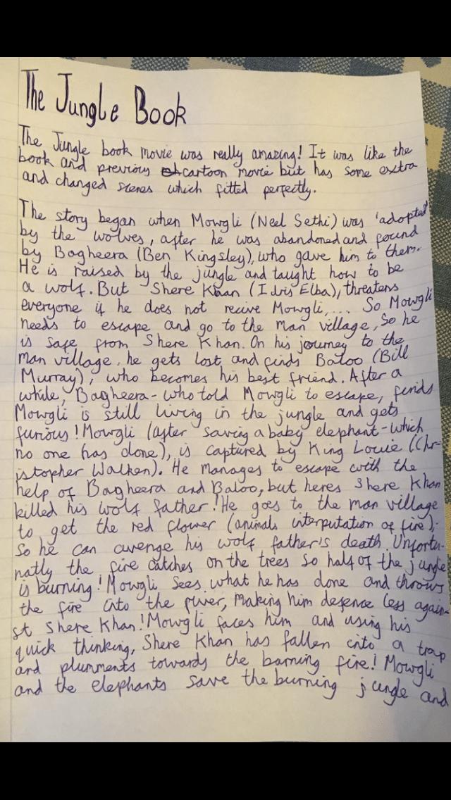 book review essay