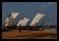 ajithaa_edirimane-returning_fisherman