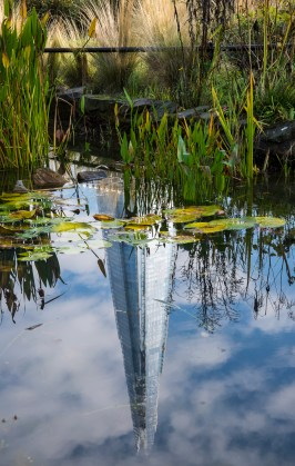 The pond in Red Cross Garden in Redcross Way near London Bridge provides a reflected picture of the Shard.
