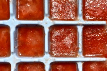 Watermelon ice cubes in an ice cube tray. Credit: Copyright 2016 David Latt