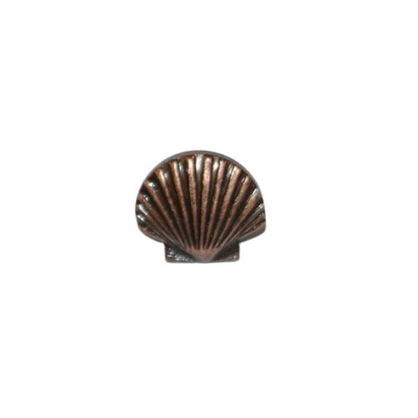 St Thomas Of Acon Shell - Small Bronze