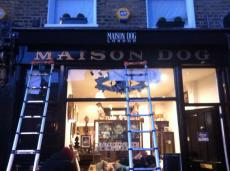 Maison Dog front view nearly done