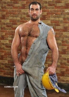 daddy-bear-workman (2)