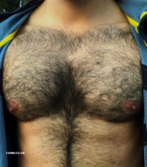 male fur hairy chest erect nipples