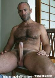 Hairy Mature Turkish Men blue collar cock erect