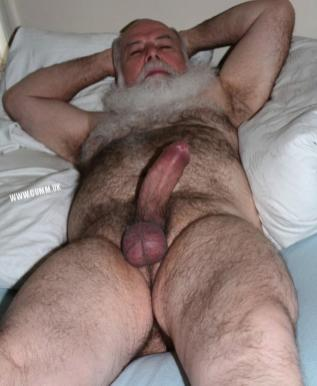 semen daddy senior bear silver hot cock daddy