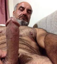 Big-Stocky-Daddy-Bear-show-their-glorious-hairy-bellies-stocky-arses-stocky-balls-huge-cocks-big-chest-MAM-120