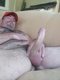 gay-bear-hung-227