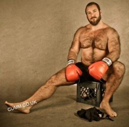 bear-art-naked-sportsman-the-boxer-hairy-Copy