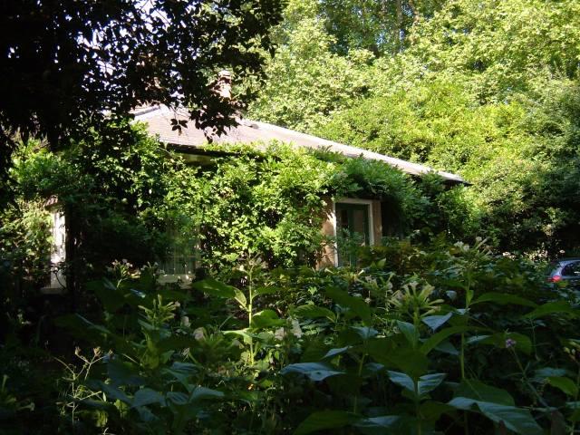 The Ranger's Cottage